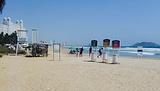 Mr. Lionso Playa Bruja