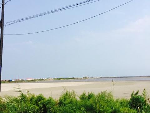 浅水湾海顺海鲜烧烤大排档旅游景点图片