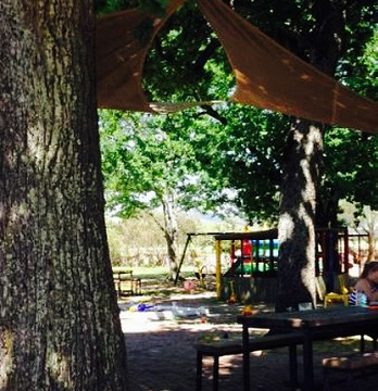 Wild Clover Restaurant的图片