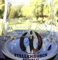 Stellenbosch Brewing Co