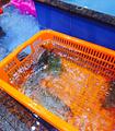红塔湾海鲜馆