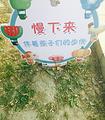 稻香湖生态园