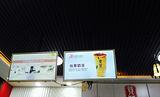 潮道港贡茶