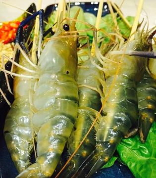 金椰園椰子鸡主题餐厅