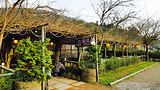 吉園葡庭園餐廳