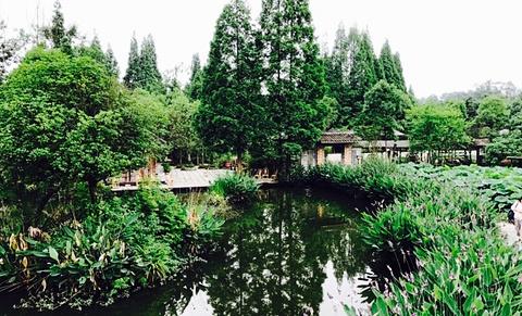 青城湾湿地庄园•生态园林美食