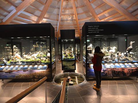 鸟类博物馆旅游景点图片