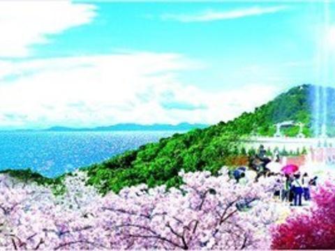 赤山法华院旅游景点图片