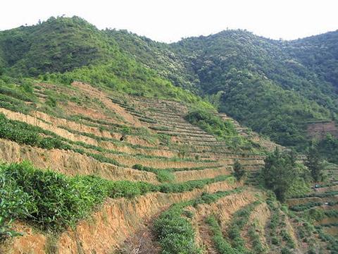五凤山旅游景点图片