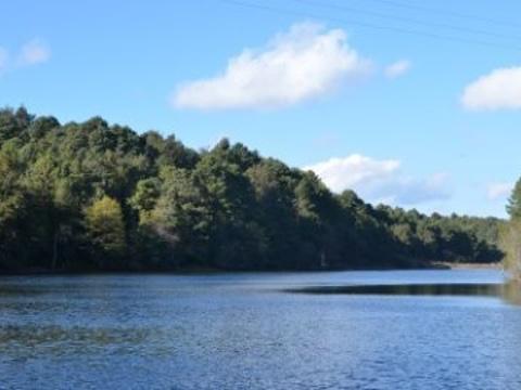 磨盘山国家森林公园旅游景点图片