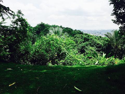 瓜亚基尔旅游景点图片
