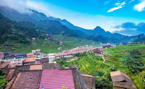培秀村的图片