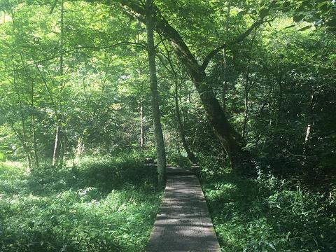 小溪旅游景点图片