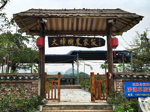 大樟树农家饭旅游景点图片