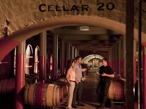奔富葡萄酒庄旅游景点图片