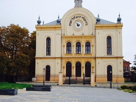 Pecs Synagogue旅游景点图片