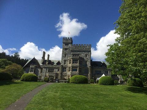 哈利城堡旅游景点图片