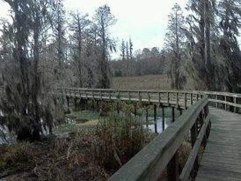 Augusta旅游景点图片