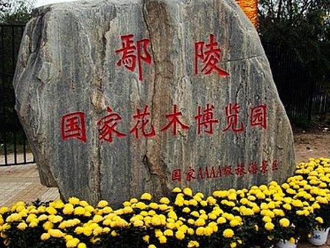 鄢陵国家花木博览园旅游景点图片