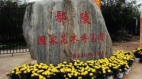 鄢陵国家花木博览园的图片