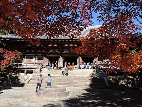神护寺旅游景点图片
