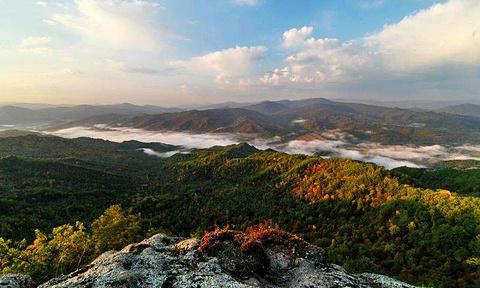 达里景区的图片