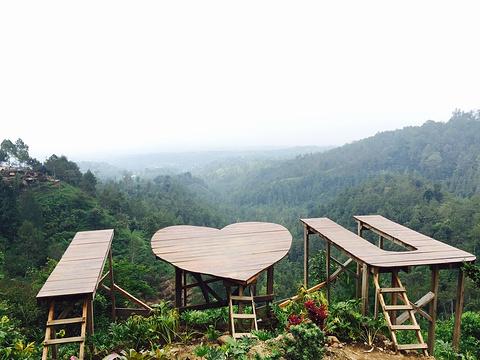巴图旅游图片