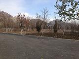 大武口森林公园