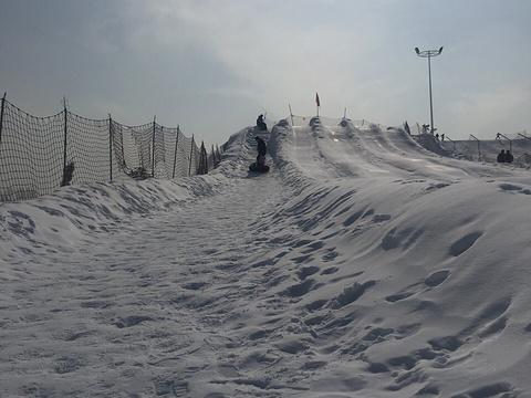 香草园滑雪场旅游景点图片