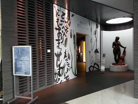 BB广场美术馆旅游景点图片