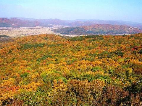 松峰山自然保护区旅游景点图片