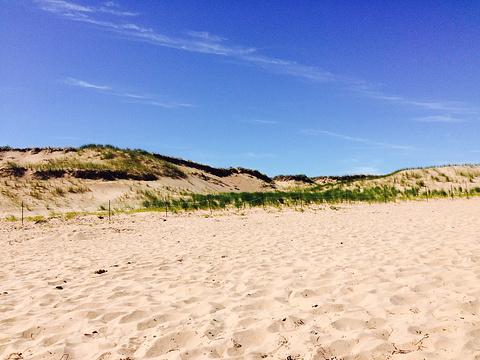 布莱克利海滩旅游图片