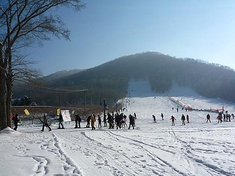 玉泉国际狩猎滑雪场旅游景点图片