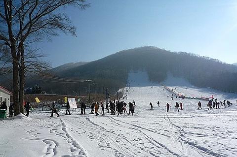 玉泉国际狩猎滑雪场的图片