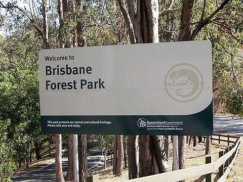 布里斯班森林公园旅游景点图片