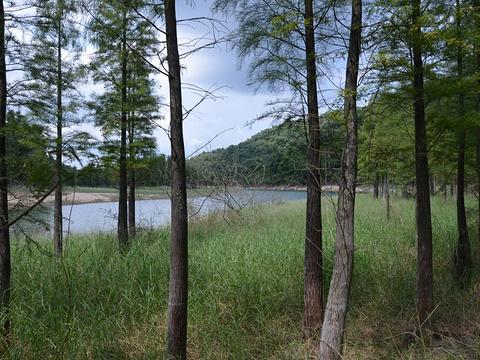 五桂山旅游景点图片