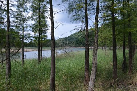 五桂山的图片