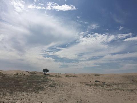 图开沙漠旅游景点图片