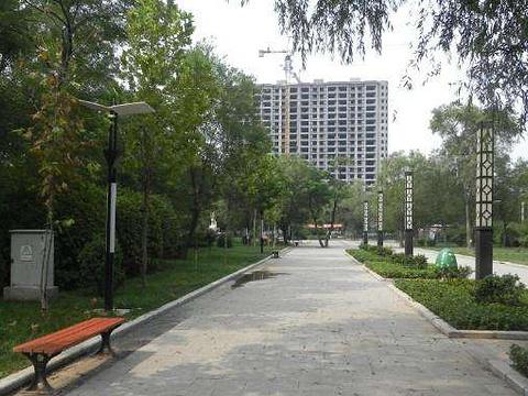 青年公园旅游景点图片