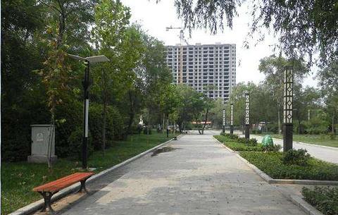 青年公园的图片