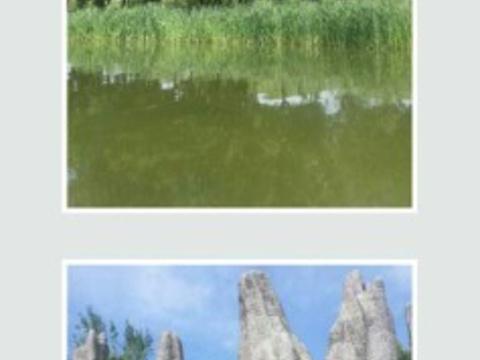 垂钓公园旅游景点图片