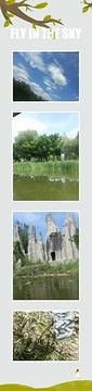 垂钓公园的图片