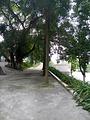开平市人民公园
