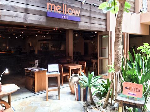 mellow cafe旅游景点图片