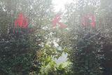 南天热带植物园