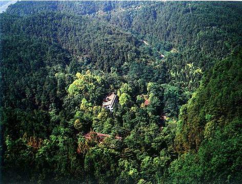 东山国家森林公园