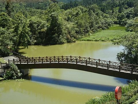 向天湖旅游景点图片