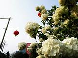 湘潭烈士陵园