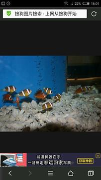 水生动物救治中心