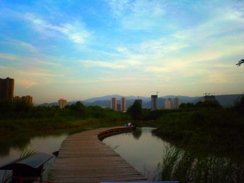 银滩湿地公园旅游景点图片